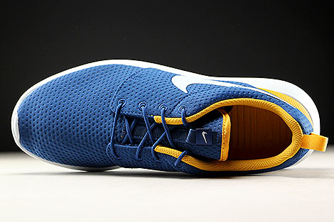 Nike Roshe One SE Coastal Blue Pure Platinum Gold Leaf Over view