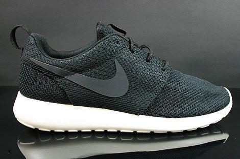 Nike Roshe Two Flyknit 365 dlmac.co.uk