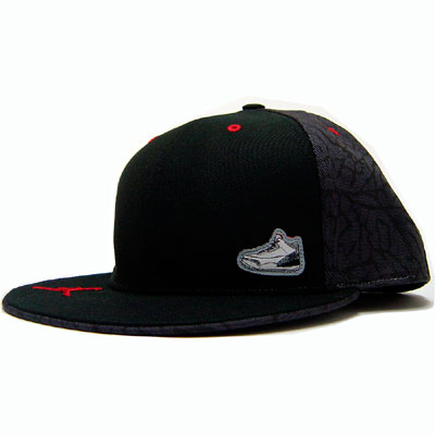 Nike Air Jordan Retro 3 Fitted Cap