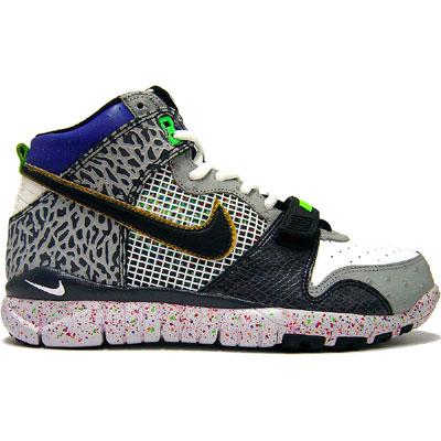 Nike Trainer Dunk Hi