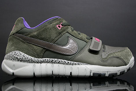 Nike Trainer Dunk Low Purple Anthracite